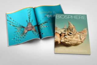 Biosphere Issue 21