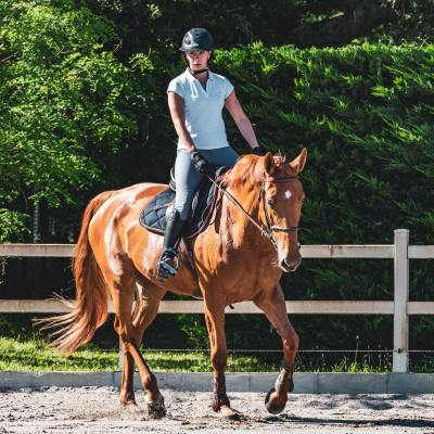 Horse and Hounds Article on Posture and how it can help you and your horse….