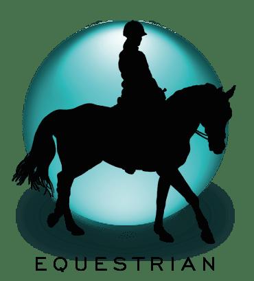 Equestrian Biomechanics