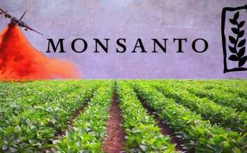 Research Careers @ Monsanto