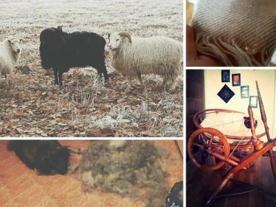 Hundewolle, Schafwolle, Spinnrad und gewebter Stoff zur Selbstversorgung mit Textilien