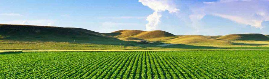 Ανάλυση γεωργικών