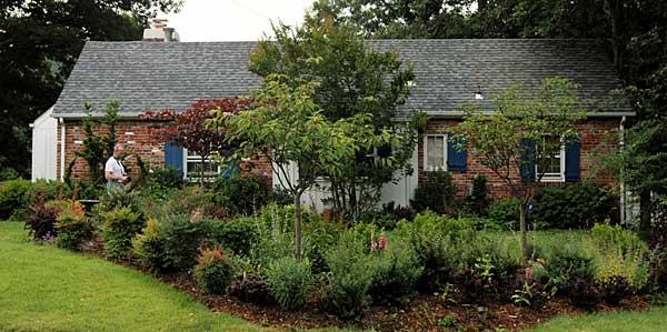 2006-June-sideyard