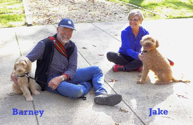 Richard-Arlene-and-dogs-306