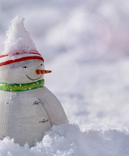 Kardan adam