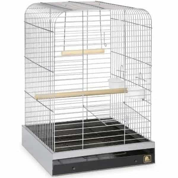 Flat Top Bird Cage for Medium Large Parrots by Prevue 125 Chrome
