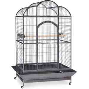 Elegant Top Bird Cage for Large Parrots by Prevue 3155 Silverado Black