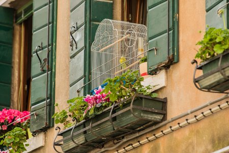 parakeet cage on balcony in the Venice
