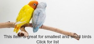 This item great for smallest and small birds Click here lovebird and parrotlet