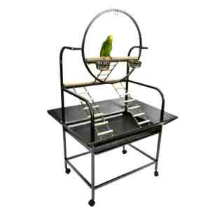 Parrot Play Stand for Medium Parrots by AE J6 Platinum