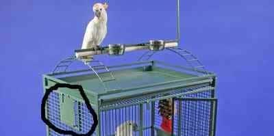 Why bird cages have breeder doors