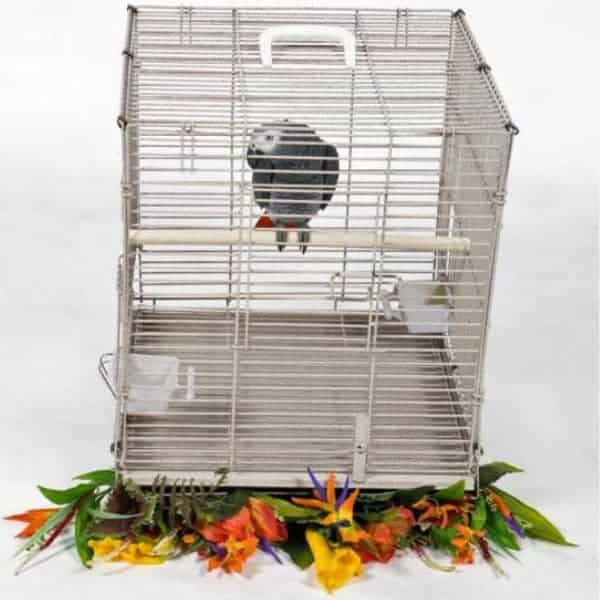 Travel Carrier EZ Fold Up for Medium Parrots by AE BC1819M Black