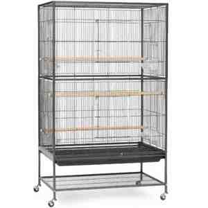 Indoor Aviary Flight Cage for Small Birds by Prevue F040 Black