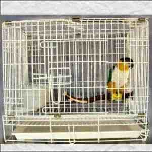Fold Away Travel Cage Carrier for Large Parrots #603 30X19