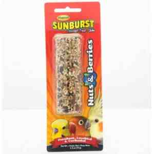 Higgins Sunburst Treat Stick Small Parrots – Nuts & Berries