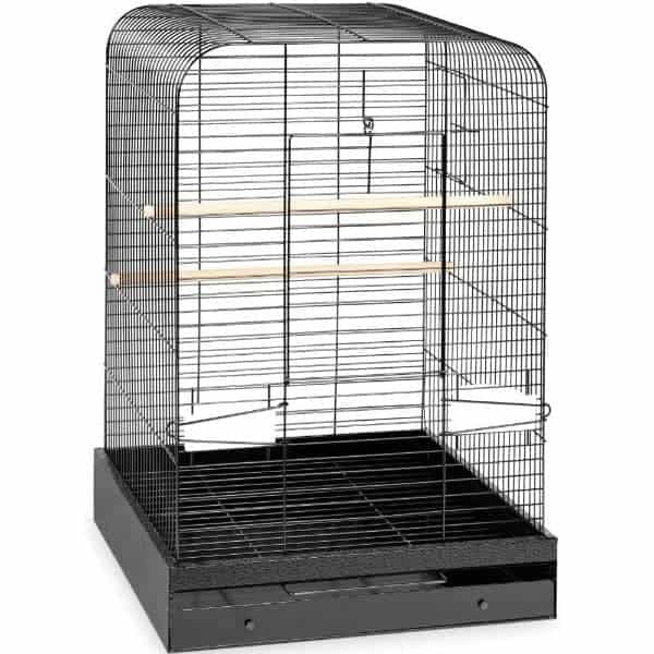 Flat Top Bird Cage for Medium Parrots by Prevue 124 Black