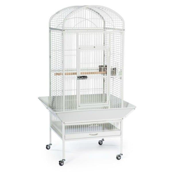 Dome Top Bird Cage for Medium Parrots by Prevue 34522 White