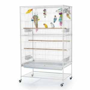 Indoor Aviary Flight Cage for Small Birds by Prevue F041 White