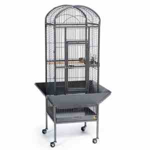Dome Top Bird Cage for Small Parrots by Prevue 34511 Black