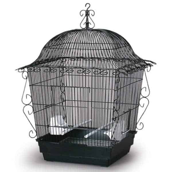 Elegant Top Bird Cage for Small Birds by Prevue 220 Black