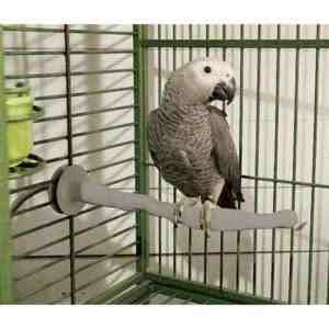 Bird Warming Heated Thermo Perch for Medium Sized Birds