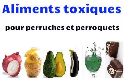 Aliments toxiques pour les perruches et les perroquets