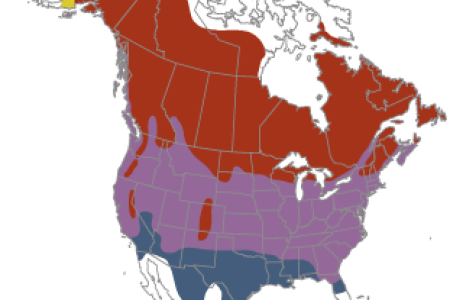 canada us map canada goose canada map » Full HD MAPS Locations ...