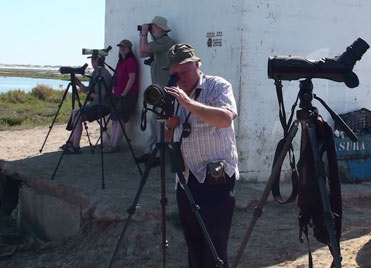 Birding in the shade in Spain, out of the midday sun