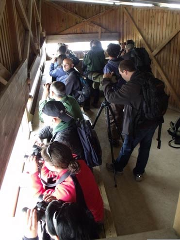 Birders in one of the hides on the Llobregat Delta reserve near Barcelona