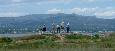Birdwatching tours to Barcelona and the Ebro Delta