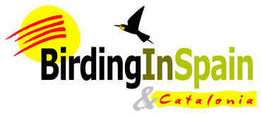 Birding In Spain new logo