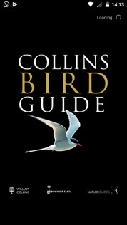Collins Bird Guide App for Android is here