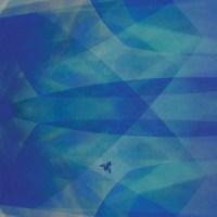 cyro-baptista-bluefly