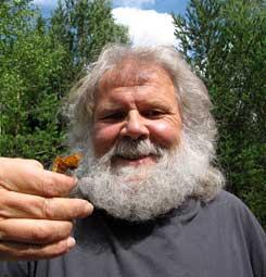 bild: BirdSafari Sweden