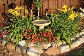 Create the Ultimate Backyard Wildlife Habitat - Birds and ... on Birds Backyard Landscapes id=60735