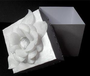 box 3 c