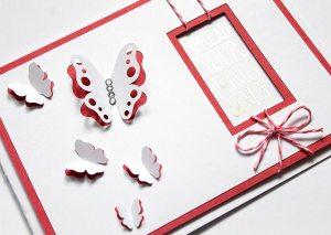 butterflycardcover5b