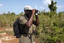 Lenn spotting another Barbuda Warbler (Photo by Sophia Steele)