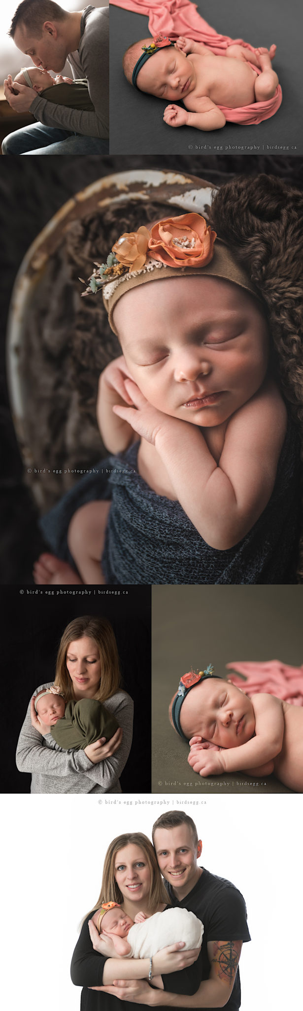 Newborn Baby Zoey | Bird's Egg Photography