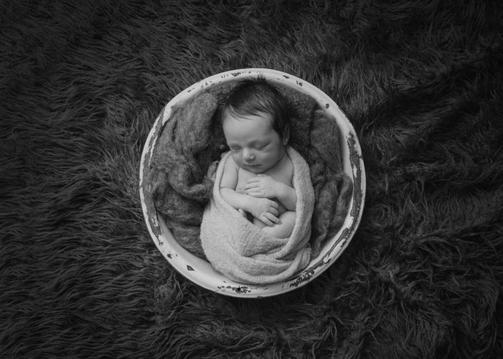 Bird's Egg Photography - Baby Lincoln