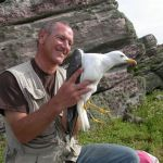 Paul Veron with lesser black-backed gull. Photo by Paul Veron