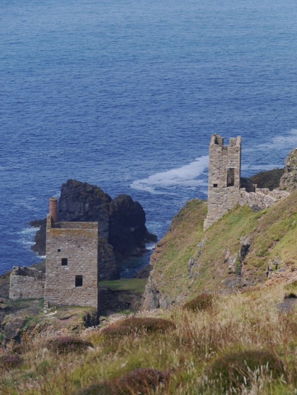 Abandoned tin mines are a common features of the Cornish coastline and often prove fruitful for breeding choughs. Photo by Liz Corry.
