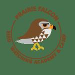 Prairie Falcon Picture