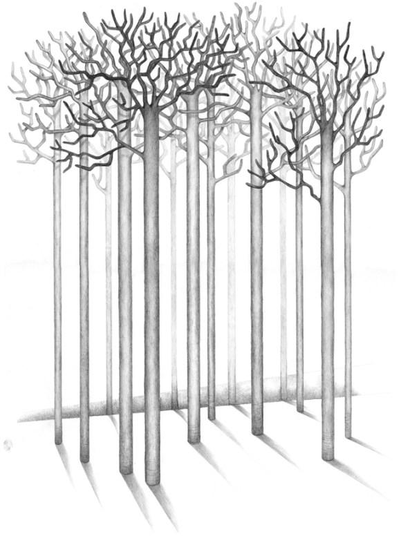 """Das Bild -Winter- gehört zu dem Zyklus """"Die Suche"""" und zeigt einen Wald ohne Laub, streng grafisch gezeichnet"""