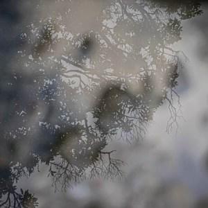Otaki River bed photographt by Birgit Moffatt