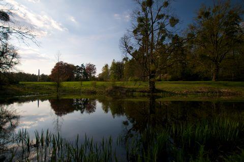Bild: Im Landschaftspark Degenershausen bei Wieserode im Harz. Aufnahme vom 17.04.2011 mit Nikon D300S und SIGMA 10-20mm F3.5 EX DC HSM.
