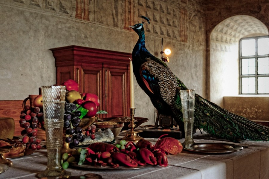 Bild: Schloss Kalmar und die Tafel des Gustav Wasa. NIKON D700 und AF-S NIKKOR 24-120 mm 1:4G ED VR.