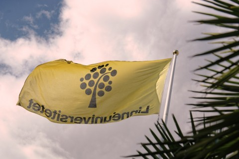 Bild: Palmen und die Flagge der Linné-Universität - das gehört irgendwie zusammen. An der Linné-Universität in Kalmar. NIKON D700 mit AF-S NIKKOR 24-120 mm 1:4G ED VR.