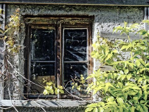 Bild: Fenster - Diafilm KODAK KODACHROME (TM) 25. OLYMPUS OM-D E-M5 mit M.ZUIKO DIGITAL ED 12‑40mm 1:2.8. ISO 200 ¦ f/2,8 ¦ 15 mm ¦ 1/250 s ¦ kein Blitz. Klicken Sie auf das Bild um es zu vergrößern.