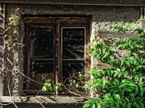 Bild: Fenster - Farbnegativ-Film LOMOGRAHY REDSCALE (TM) 100. OLYMPUS OM-D E-M5 mit M.ZUIKO DIGITAL ED 12‑40mm 1:2.8. ISO 200 ¦ f/2,8 ¦ 15 mm ¦ 1/250 s ¦ kein Blitz. Klicken Sie auf das Bild um es zu vergrößern.